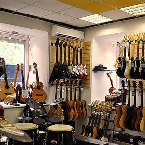 Музыкальные магазины Каширы